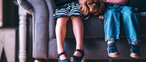 criancas-cao-sentadas-sofa