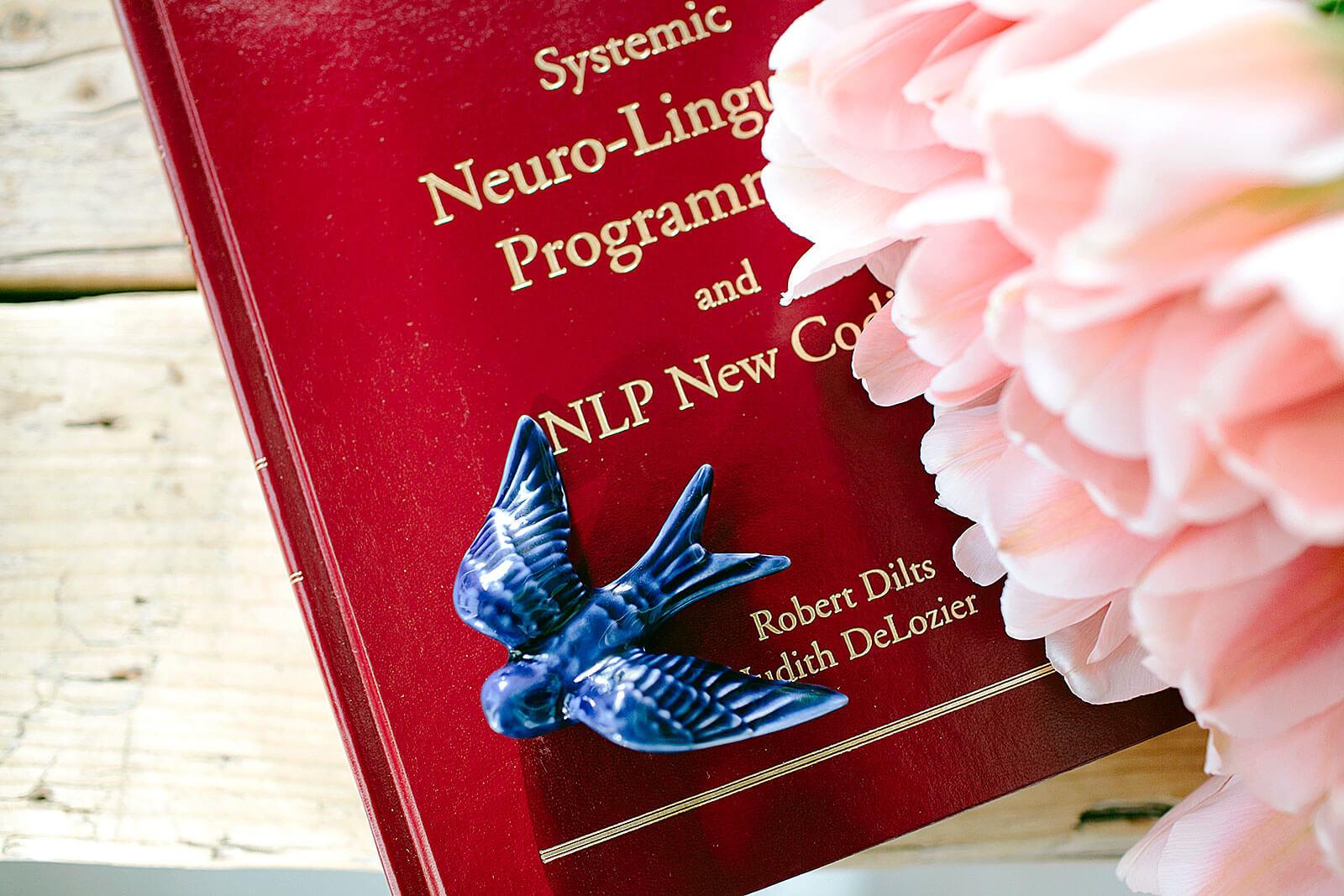 Livro sobre PNL, de Robert Dilts e Judith DeLozier, com andorinha cerâmica azul e ramo de rosas.