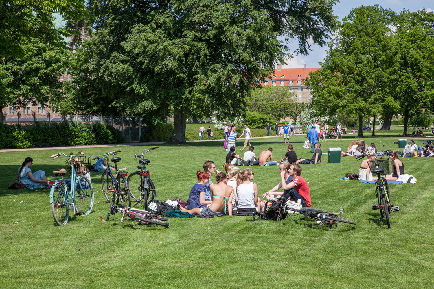People and bikes on the grass of Churchill Park, Copenhagen.
