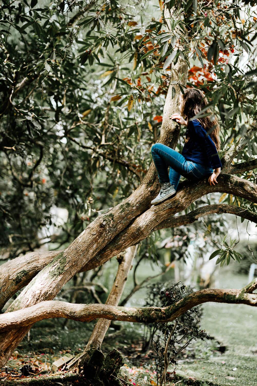 Menina de costas, sentada numa árvore.