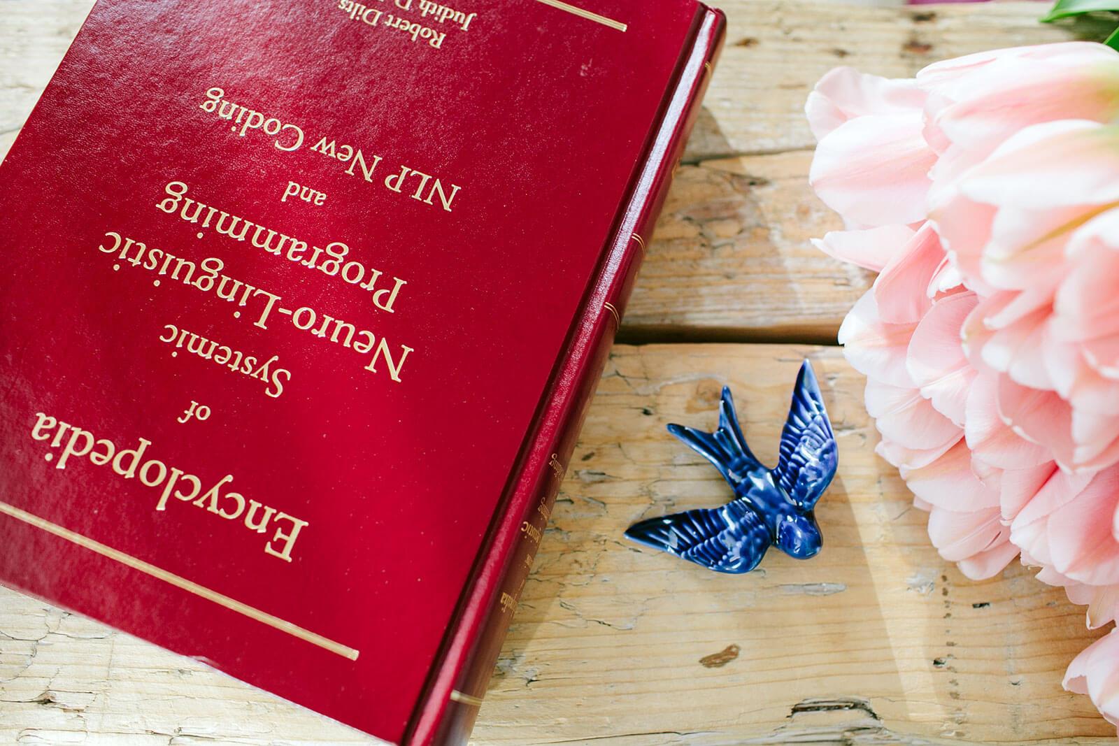 Enciclopédia sobre PLN, andorinha e flores sobre mesa de madeira.