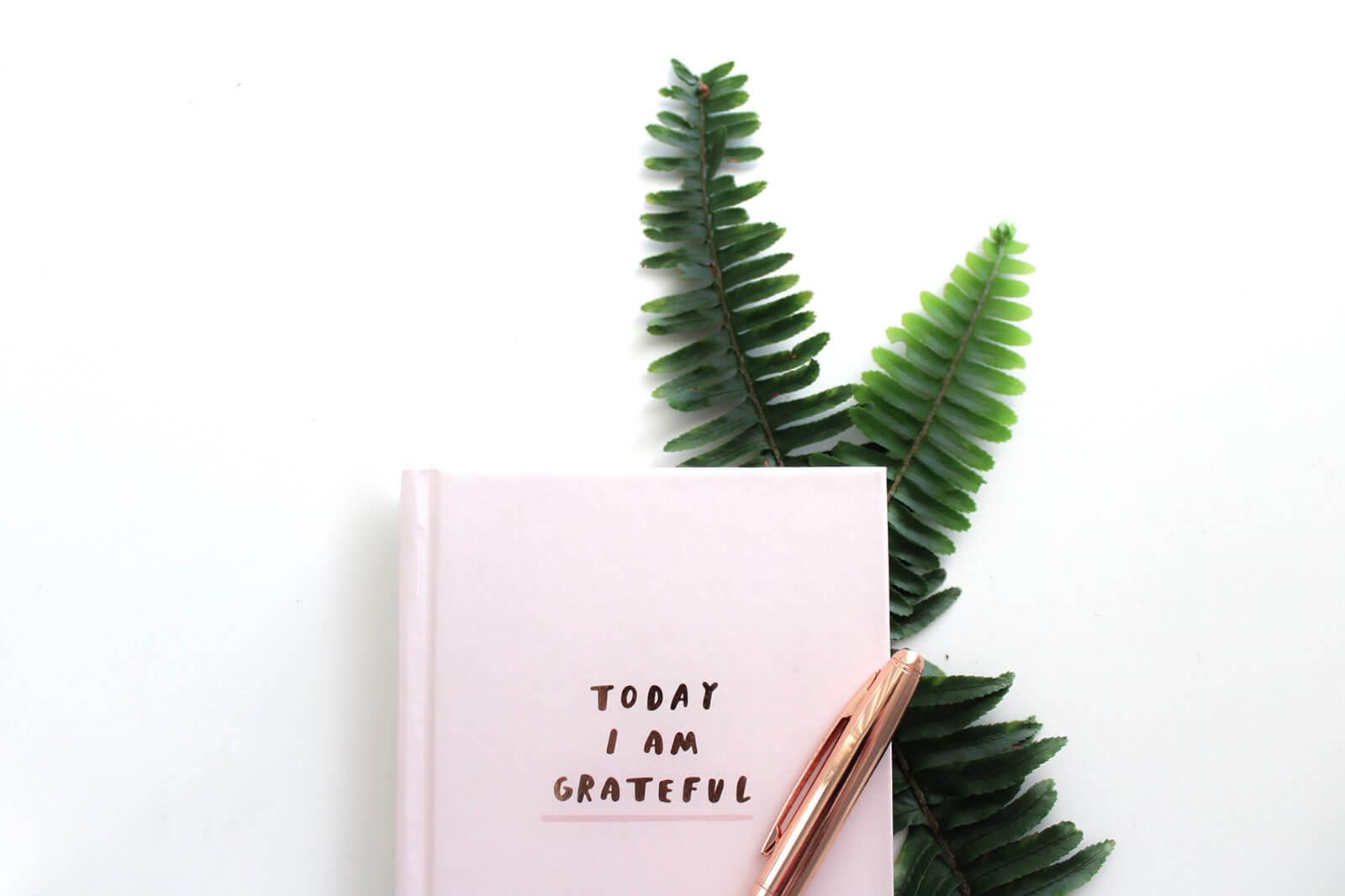 """Livro """"Today I am grateful"""" com caneta sobre ramo de folhas"""