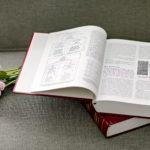 Enciclopédia de PNL e flores sobre sofá.